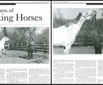 Country & Abroad July 2004 Article