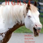 Massachusetts Horse January 2008 Cover